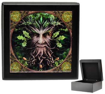 Anne Stokes Greenman box